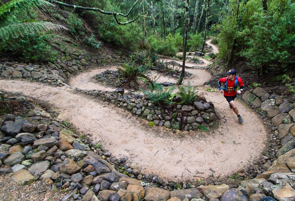 Running like a Tiger – Tassie Trailfest 2017